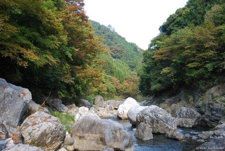 Tamagawa Valley